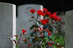 cemetery1-300x200